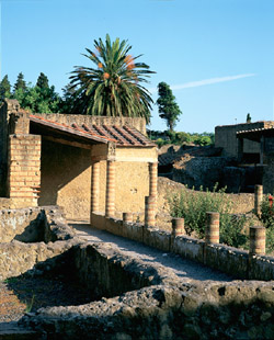 House of Albergo in Herculaneum
