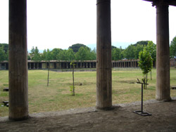 The Large Palaestra