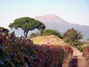 Gay tours - Pompeii tour and visit of Mastroberardino wine cellar (with explanation in English)